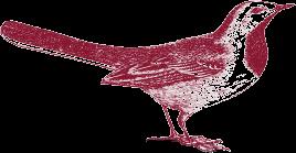 reed business school bird