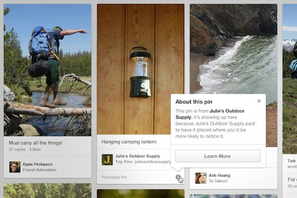 pinterest-promoted-pin