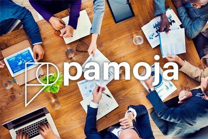 Pamoja website design and development
