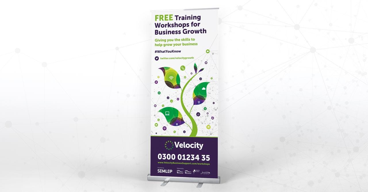 velocity growth hub